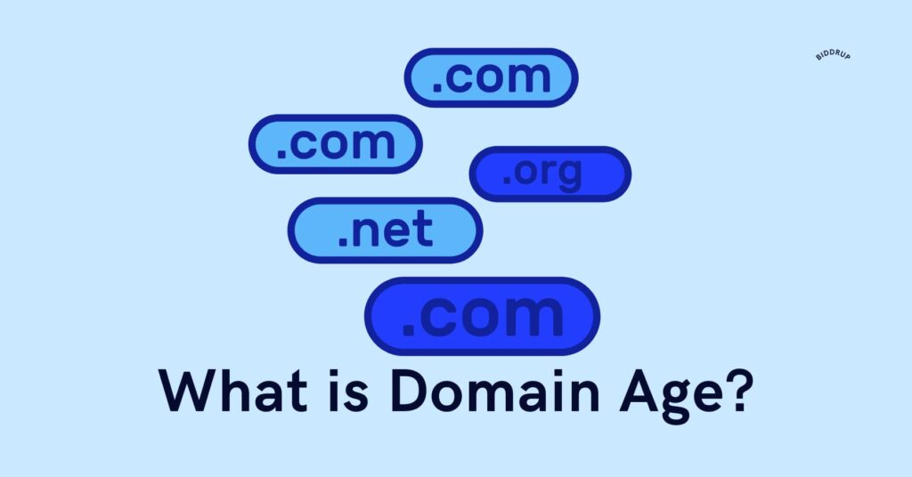 What is Domain Age? Should You Even Care About It?
